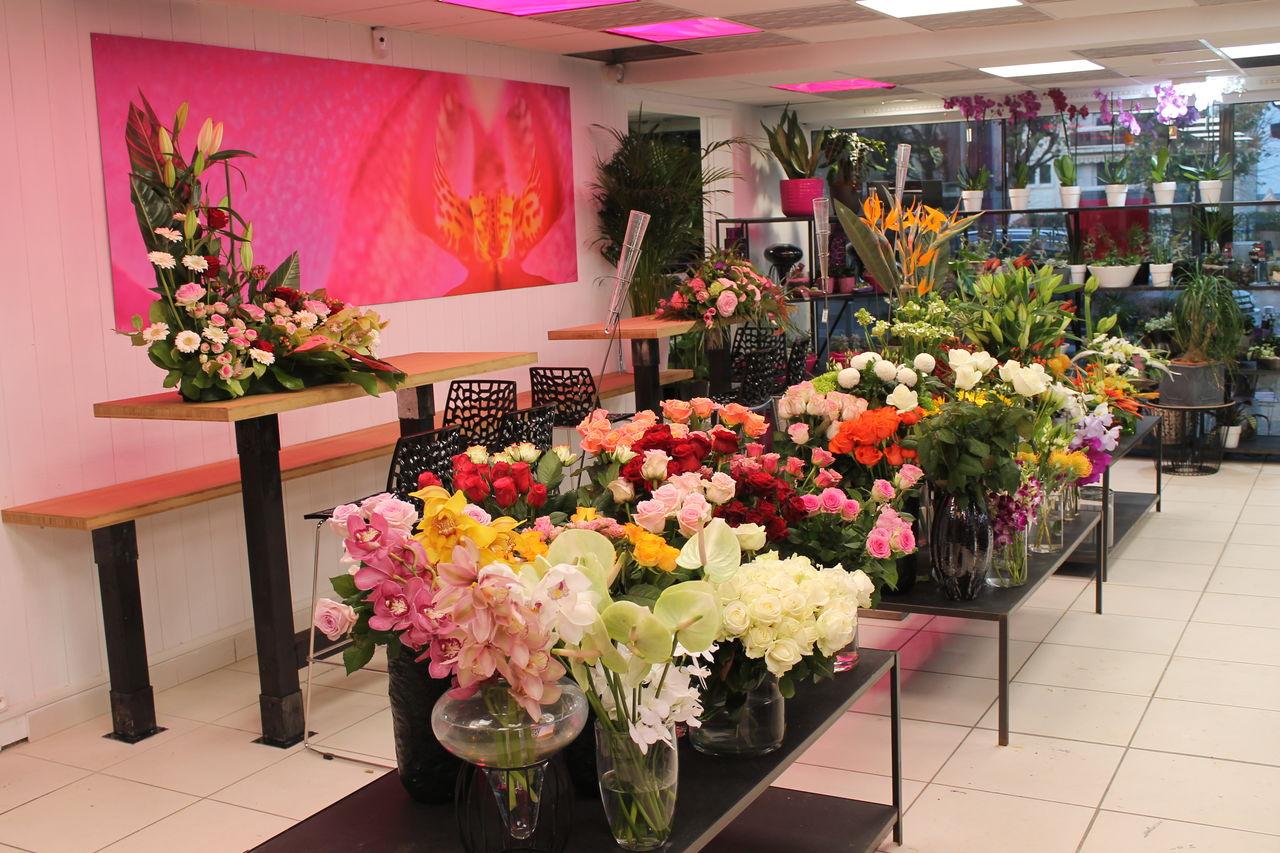 Fleurs D Avril Un Crowdfunding Culture Sur Tudigo