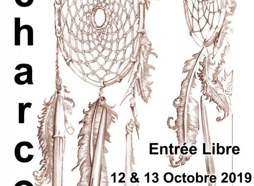 """Festival Culturel  """" Plumes en Fête"""" Echarcon"""