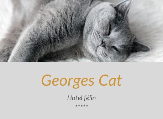 HÔTEL GEORGES CAT
