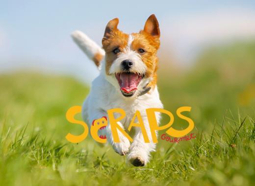 Scraps Gourmet, Épicerie fine pour chiens engagés !