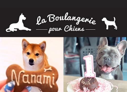 La boulangerie pour chiens