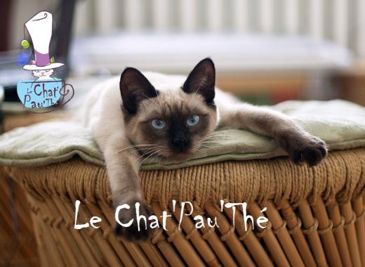 Le Chat'Pau'Thé