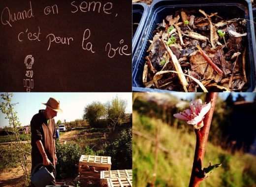 Perma Social Club : Eco-Tourisme et Permaculture