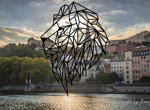Une salle à Lyon, plateforme locale et solidaire