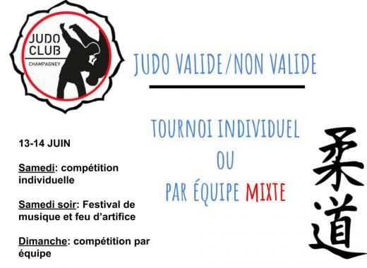 Tournoi Judo Handisport