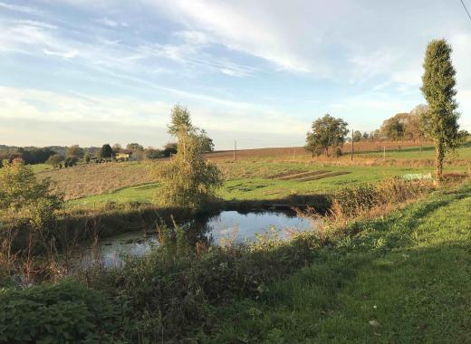 Maraîchage BIO en agro-écologie