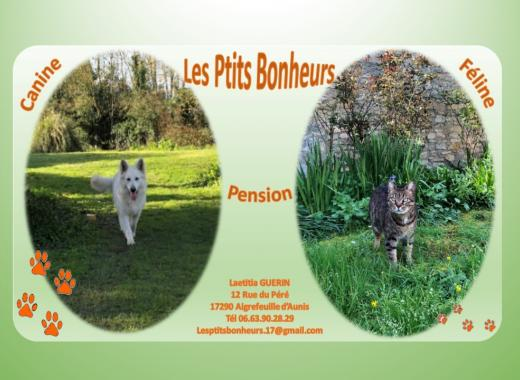Les ptits bonheurs // Pension canine et féline