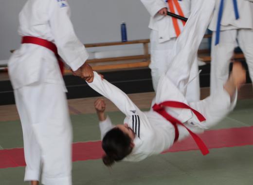 Objectif Championnats de France JUJITSU expression technique