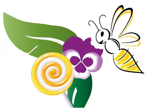 La Part des Violettes, fleuriste éco-responsable