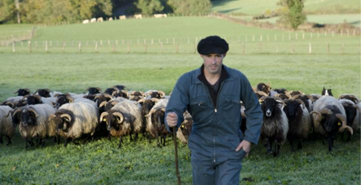 Coopérative Laitière du Pays Basque