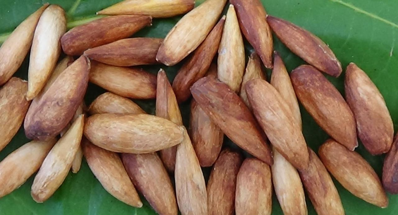 Amandes-pays Guadeloupe