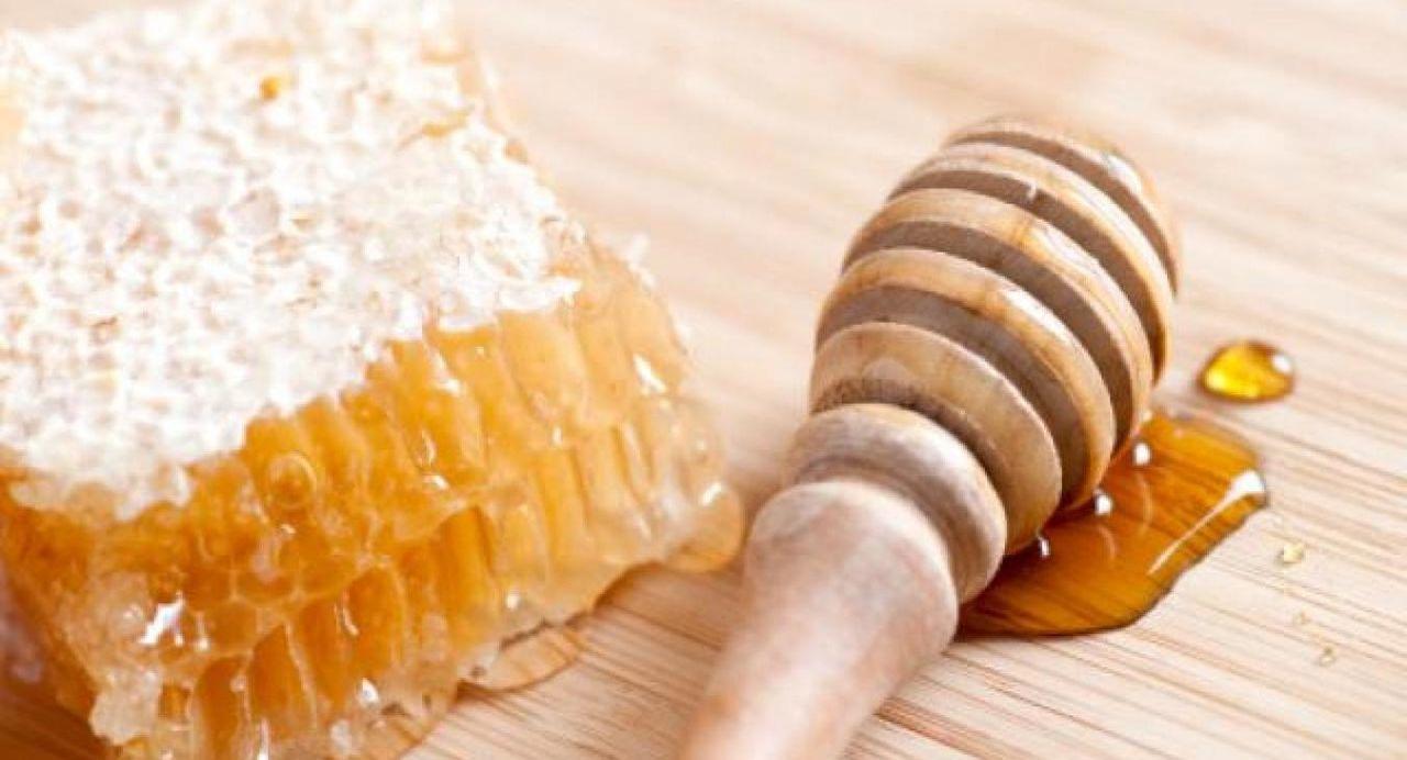 Des abeilles au Clos des Collines