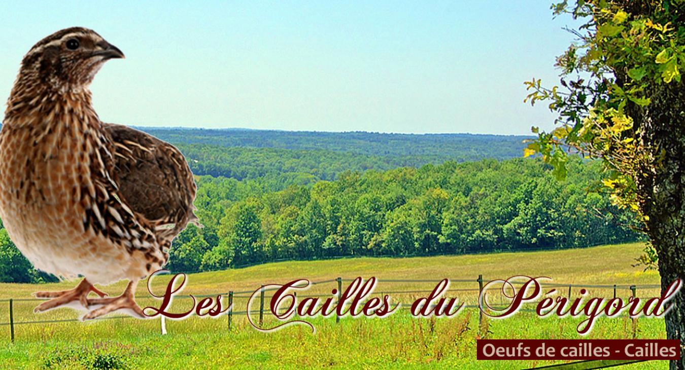 Cailles du Périgord
