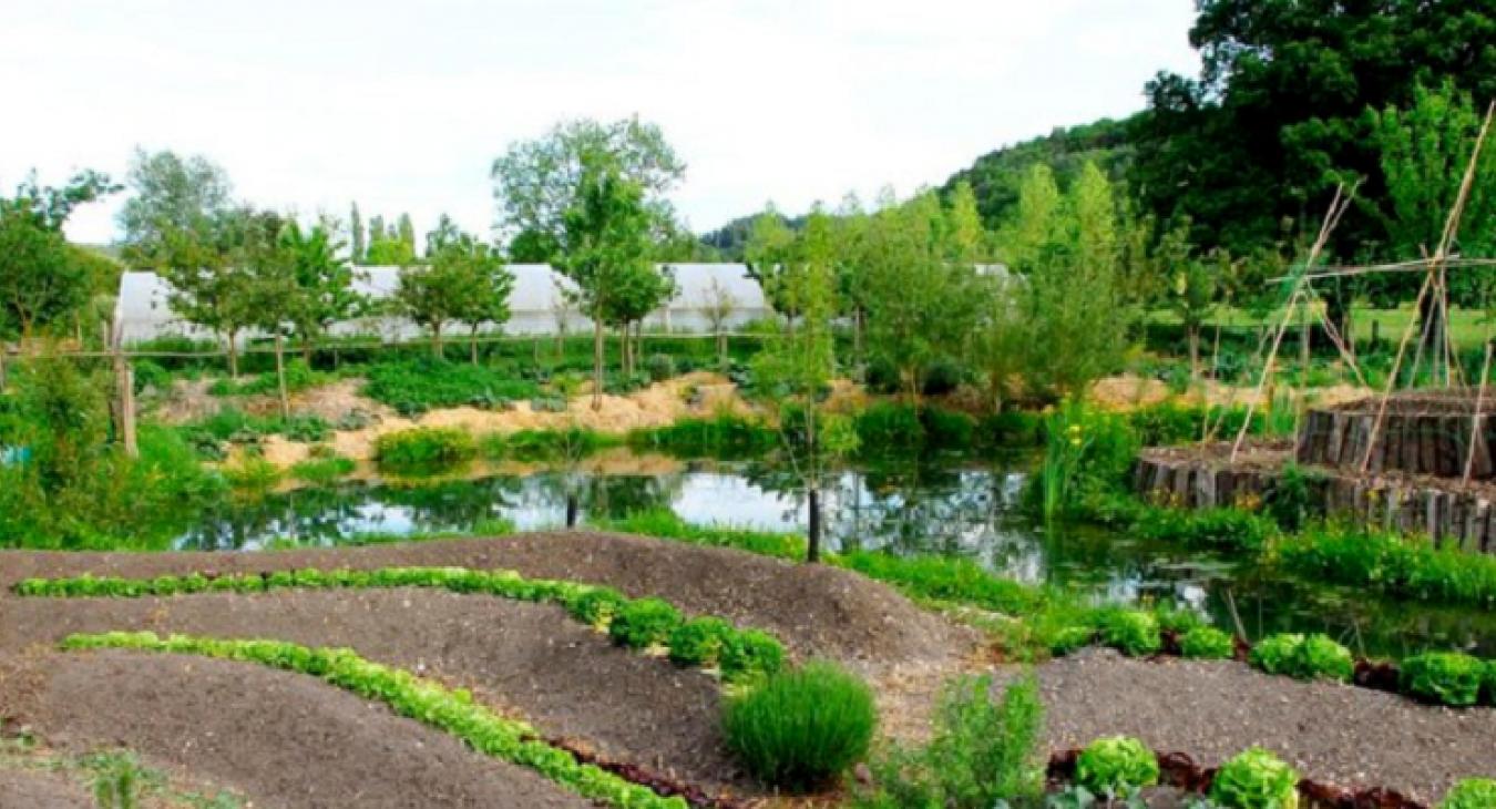 Athéa maraîchage bio en permaculture