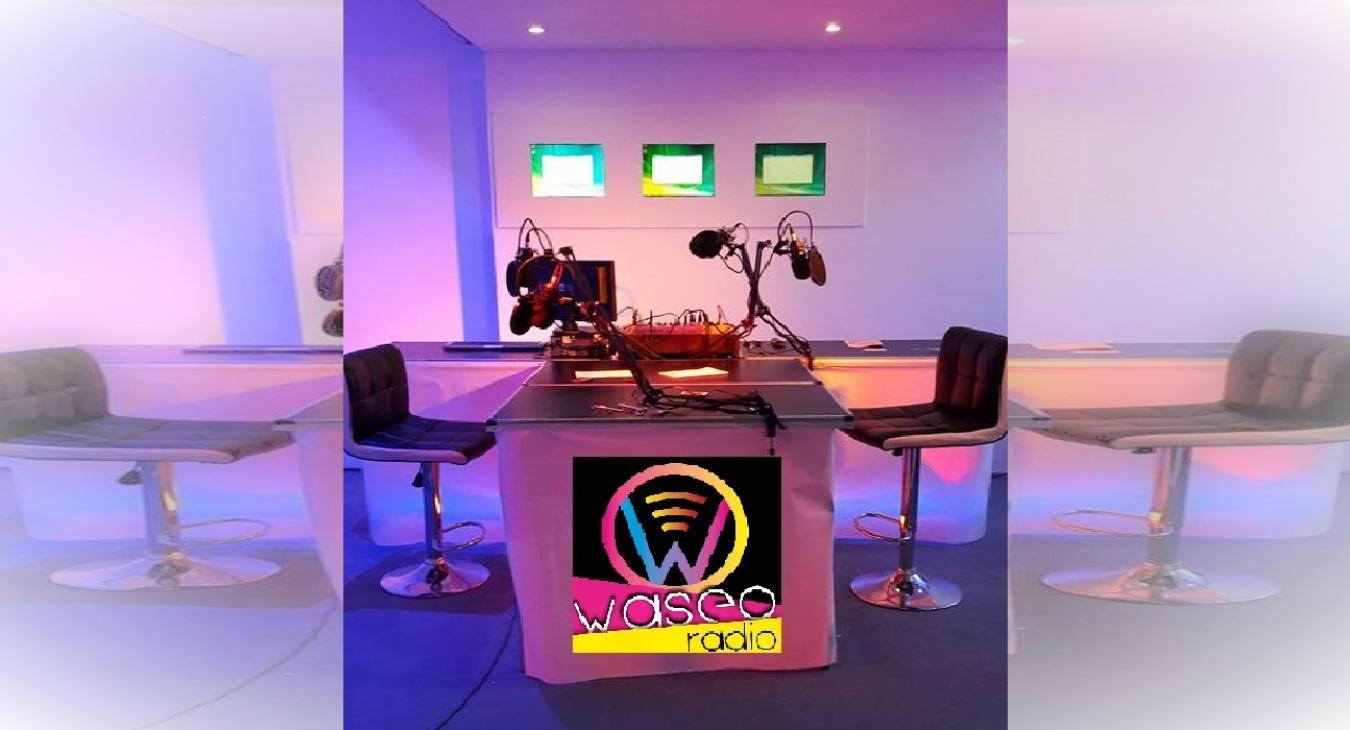 WASEO webmédia