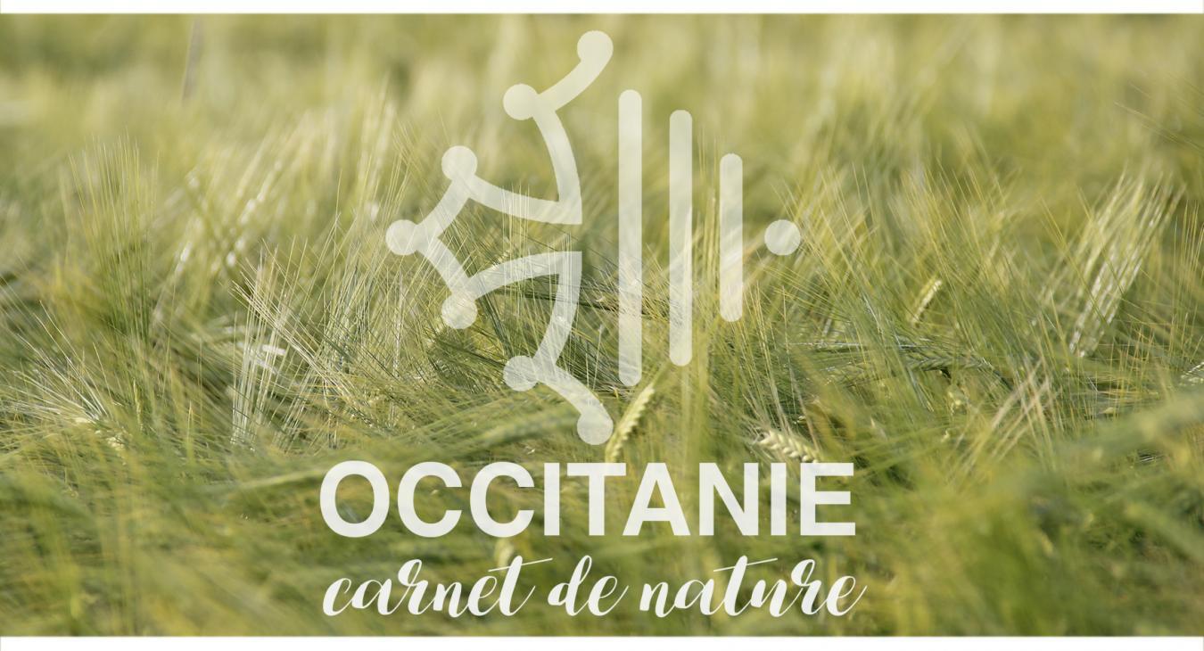 Occitanie, carnet de nature