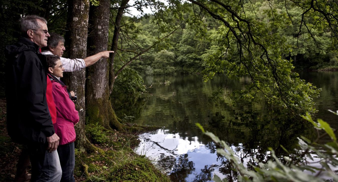 Préserver ensemble la forêt du Morvan
