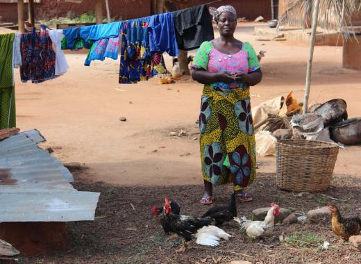 Créer des élevages de volailles au Togo