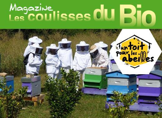 Les coulisses du Bio & un toit pour les abeilles