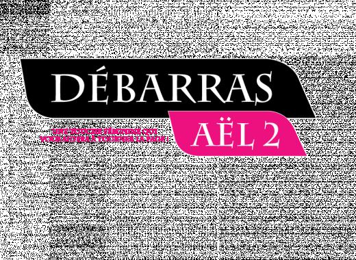 Aël 2 Débarras Brocante