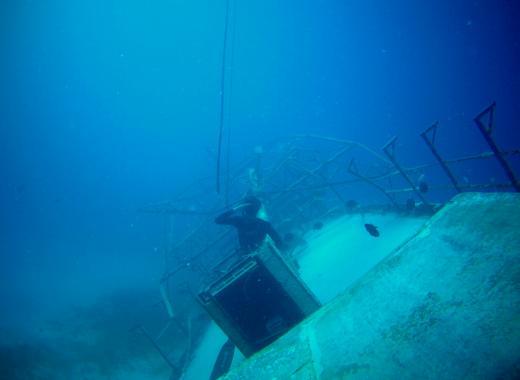 école écologique de plongée en apnée