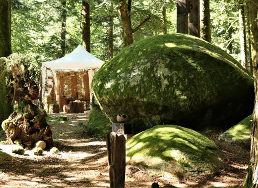 Sensibilisation éco-citoyenneté Forêt Follies