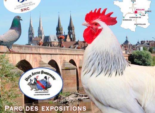 Exposition Internationale d'Aviculture de Moulins 2019