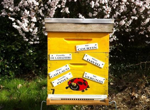 Parrainage de ruche éco-citoyenne
